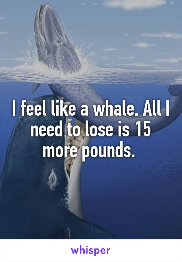 I feel like a whale. All I need to lose is 15 more pounds.