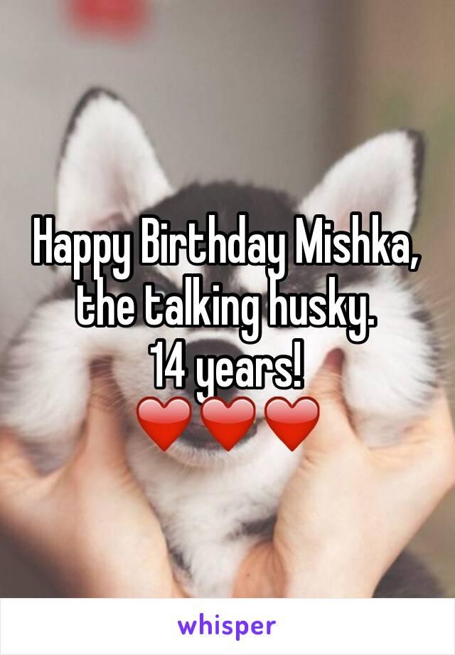 Happy Birthday Mishka, the talking husky.  14 years! ❤️❤️❤️