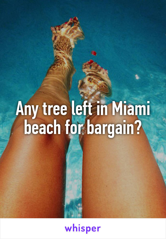 Any tree left in Miami beach for bargain?
