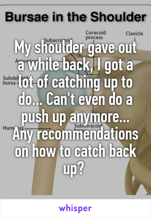 My shoulder gave out a while back, I got a lot of catching up to do... Can't even do a push up anymore... Any recommendations on how to catch back up?