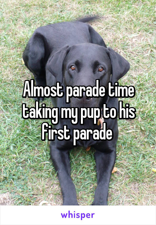 Almost parade time taking my pup to his first parade