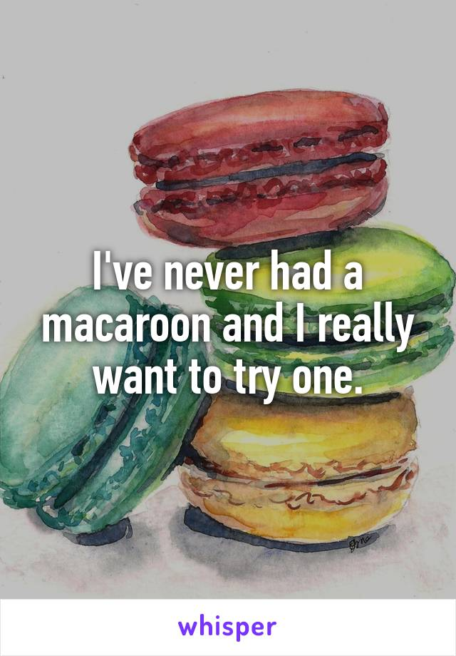 I've never had a macaroon and I really want to try one.