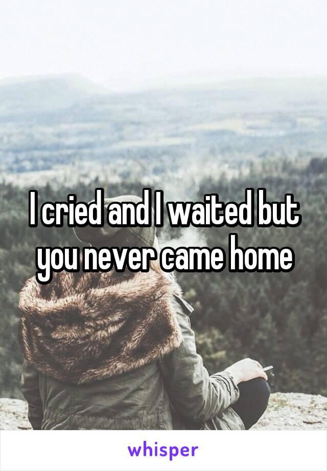 I cried and I waited but you never came home