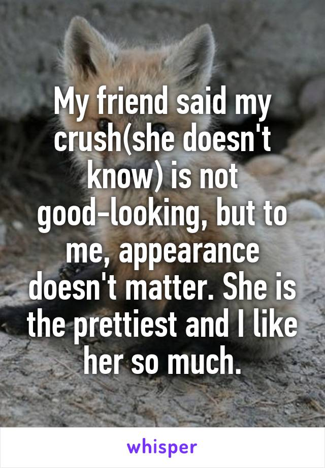 My friend said my crush(she doesn't know) is not good-looking, but to me, appearance doesn't matter. She is the prettiest and I like her so much.