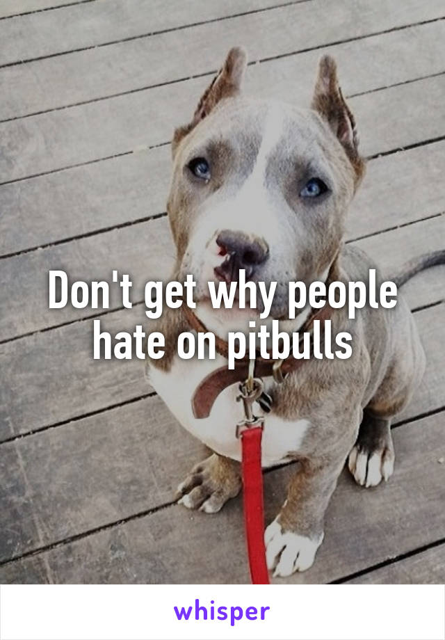 Don't get why people hate on pitbulls