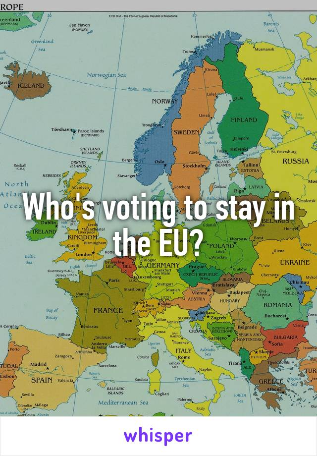 Who's voting to stay in the EU?