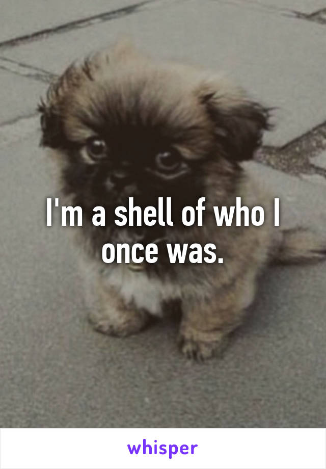 I'm a shell of who I once was.
