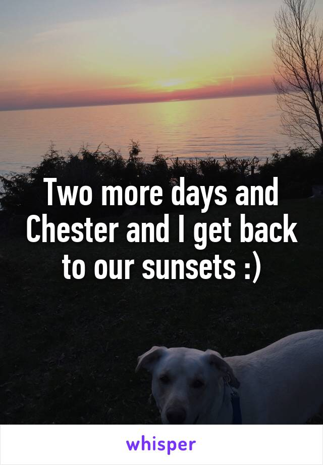 Two more days and Chester and I get back to our sunsets :)