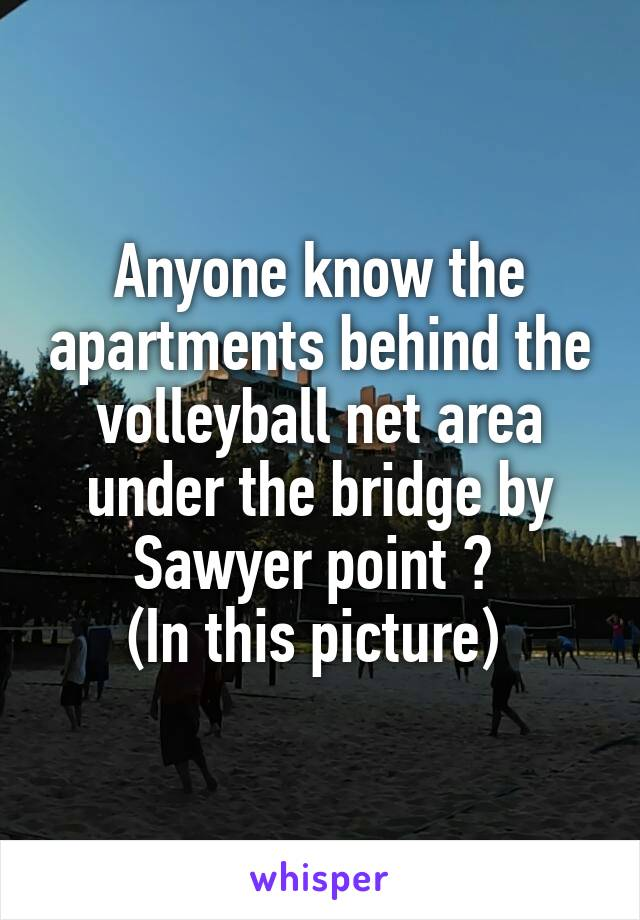 Anyone know the apartments behind the volleyball net area under the bridge by Sawyer point ?  (In this picture)