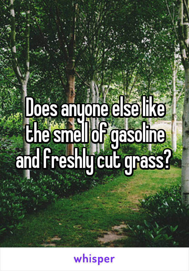 Does anyone else like the smell of gasoline and freshly cut grass?