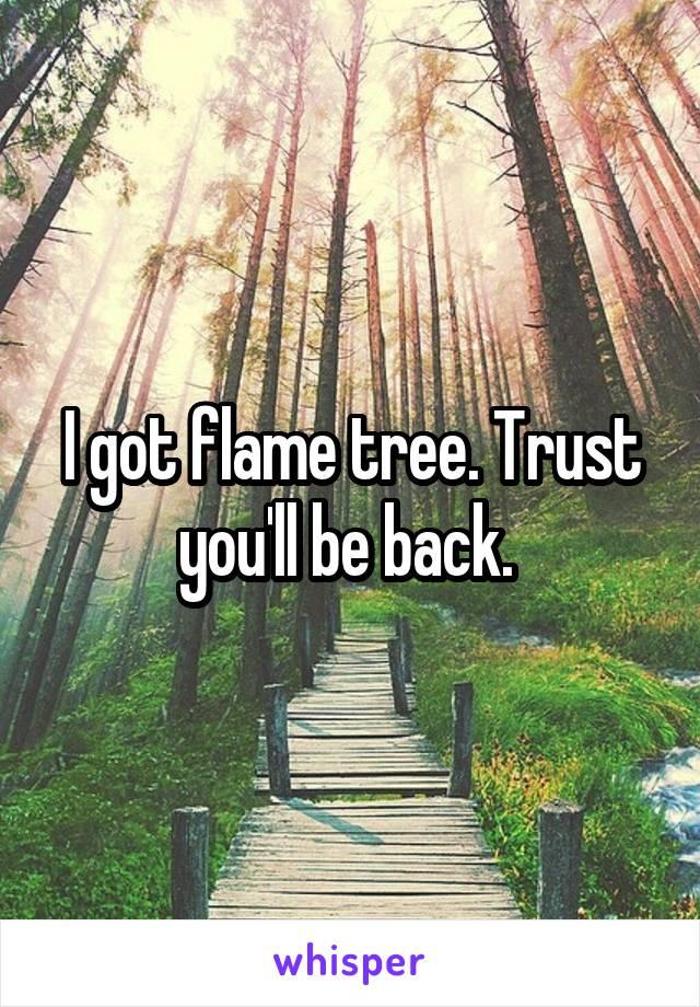 I got flame tree. Trust you'll be back.