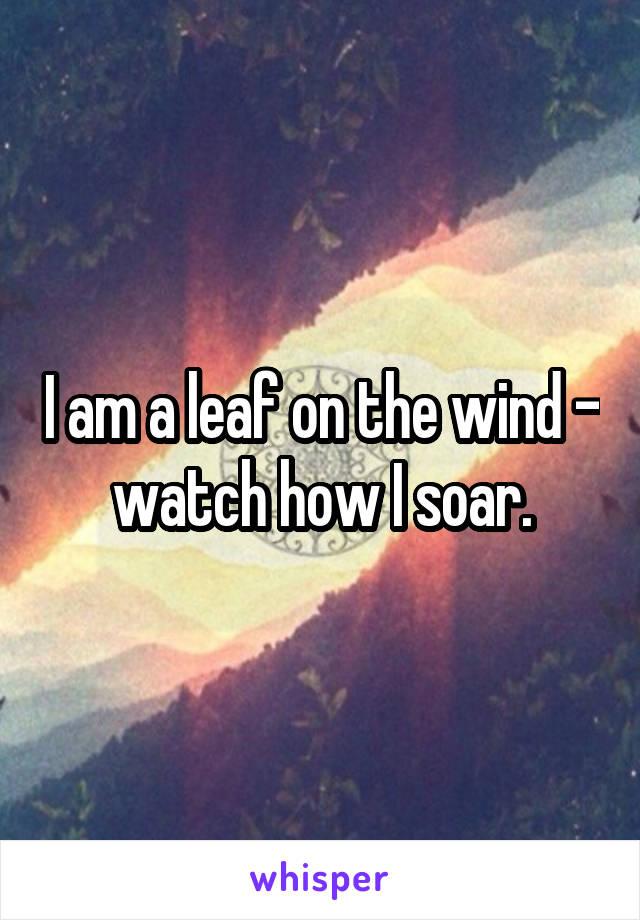 I am a leaf on the wind - watch how I soar.