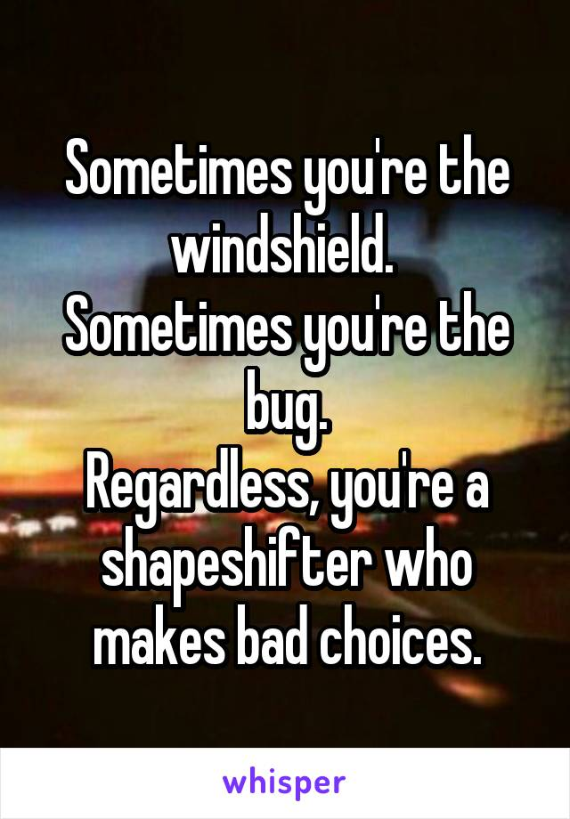 Sometimes you're the windshield.  Sometimes you're the bug. Regardless, you're a shapeshifter who makes bad choices.