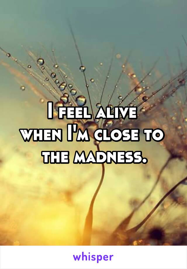 I feel alive  when I'm close to  the madness.