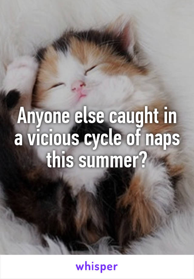 Anyone else caught in a vicious cycle of naps this summer?