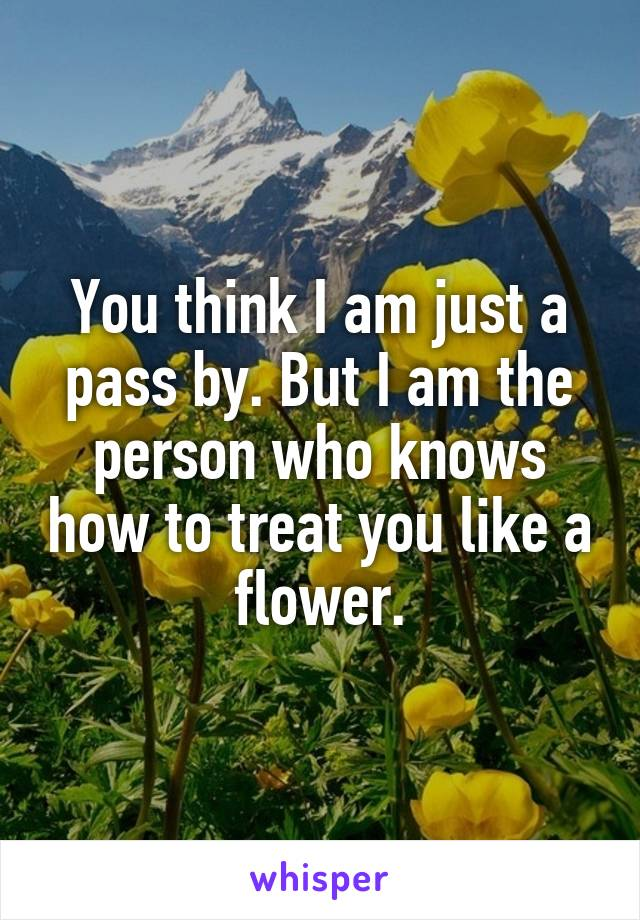 You think I am just a pass by. But I am the person who knows how to treat you like a flower.