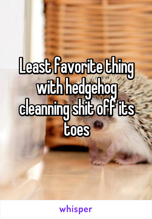 Least favorite thing with hedgehog cleanning shit off its toes
