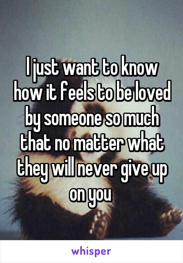 I just want to know how it feels to be loved by someone so much that no matter what they will never give up on you