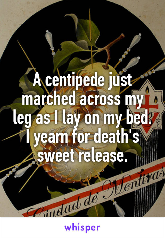 A centipede just marched across my leg as I lay on my bed. I yearn for death's sweet release.