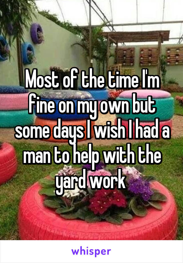 Most of the time I'm fine on my own but some days I wish I had a man to help with the yard work