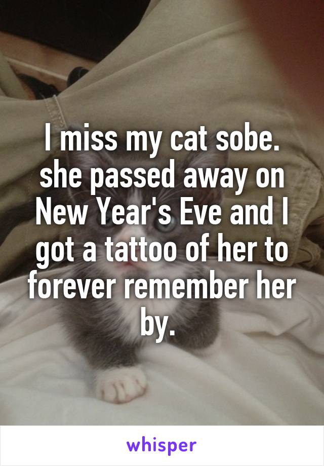 I miss my cat sobe. she passed away on New Year's Eve and I got a tattoo of her to forever remember her by.