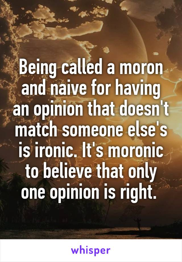 Being called a moron and naive for having an opinion that doesn't match someone else's is ironic. It's moronic to believe that only one opinion is right.
