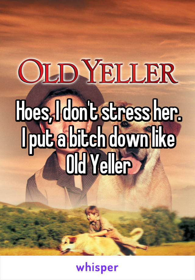 Hoes, I don't stress her. I put a bitch down like Old Yeller