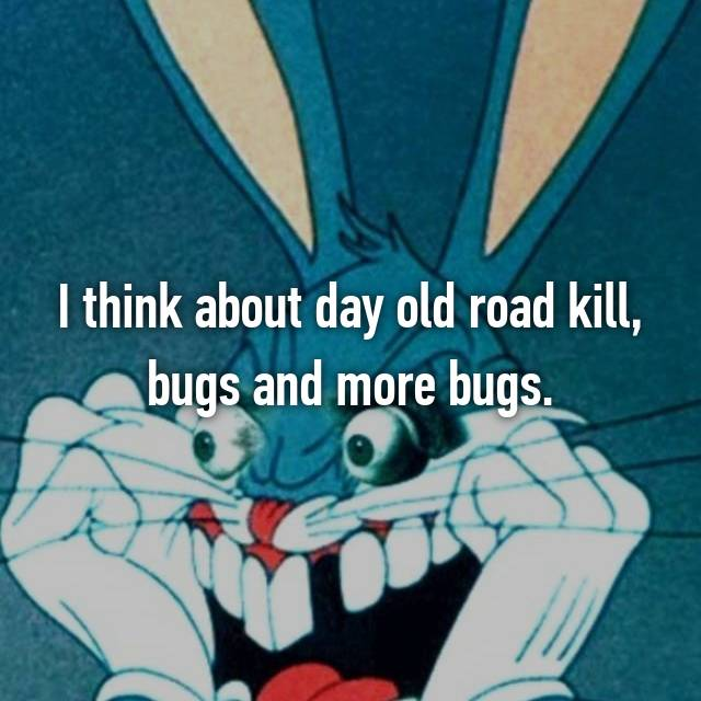 I think about day old road kill, bugs and more bugs.