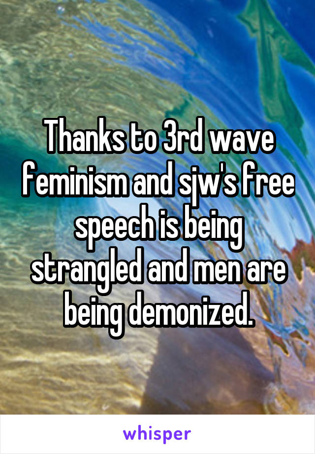 Thanks to 3rd wave feminism and sjw's free speech is being strangled and men are being demonized.