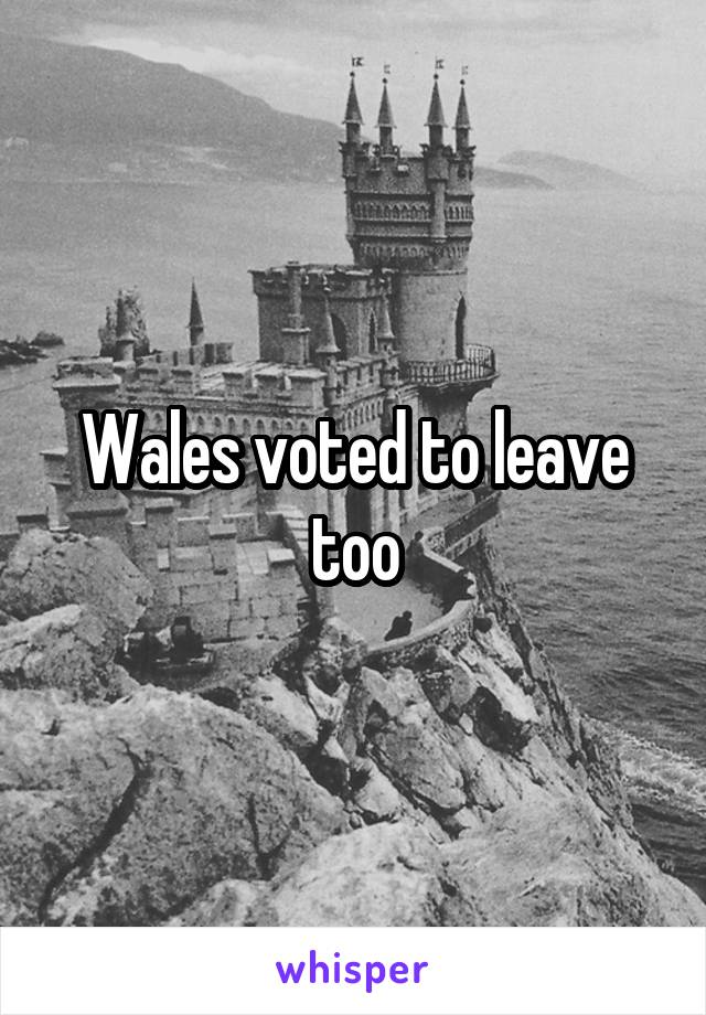 Wales voted to leave too