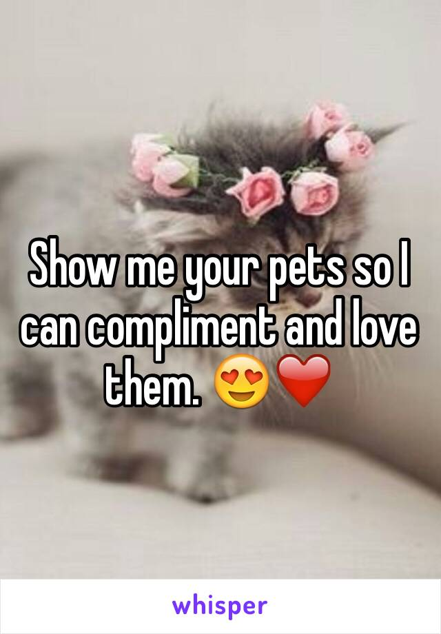 Show me your pets so I can compliment and love them. 😍❤️