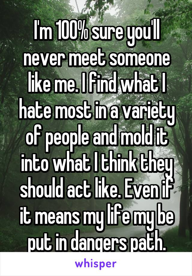 I'm 100% sure you'll never meet someone like me. I find what I hate most in a variety of people and mold it into what I think they should act like. Even if it means my life my be put in dangers path.