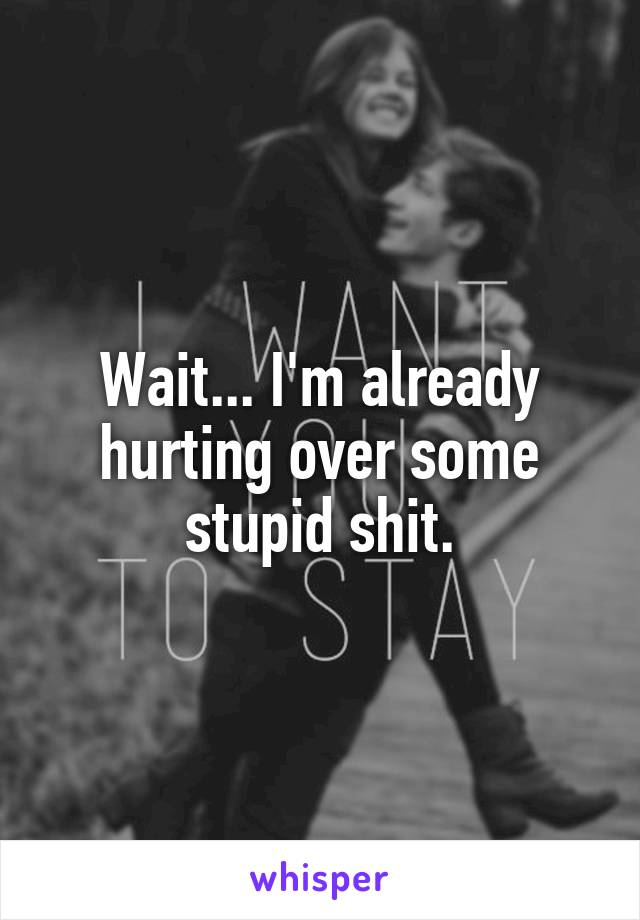 Wait... I'm already hurting over some stupid shit.