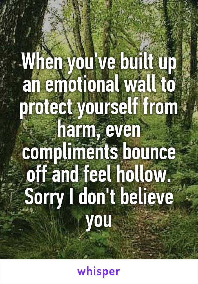 When you've built up an emotional wall to protect yourself from harm, even compliments bounce off and feel hollow. Sorry I don't believe you