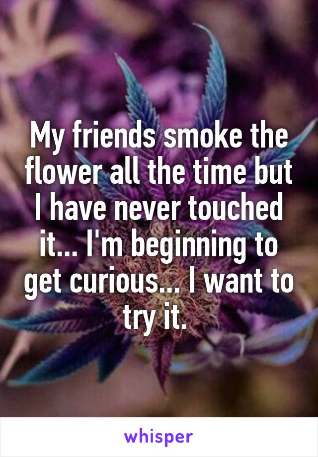 My friends smoke the flower all the time but I have never touched it... I'm beginning to get curious... I want to try it.