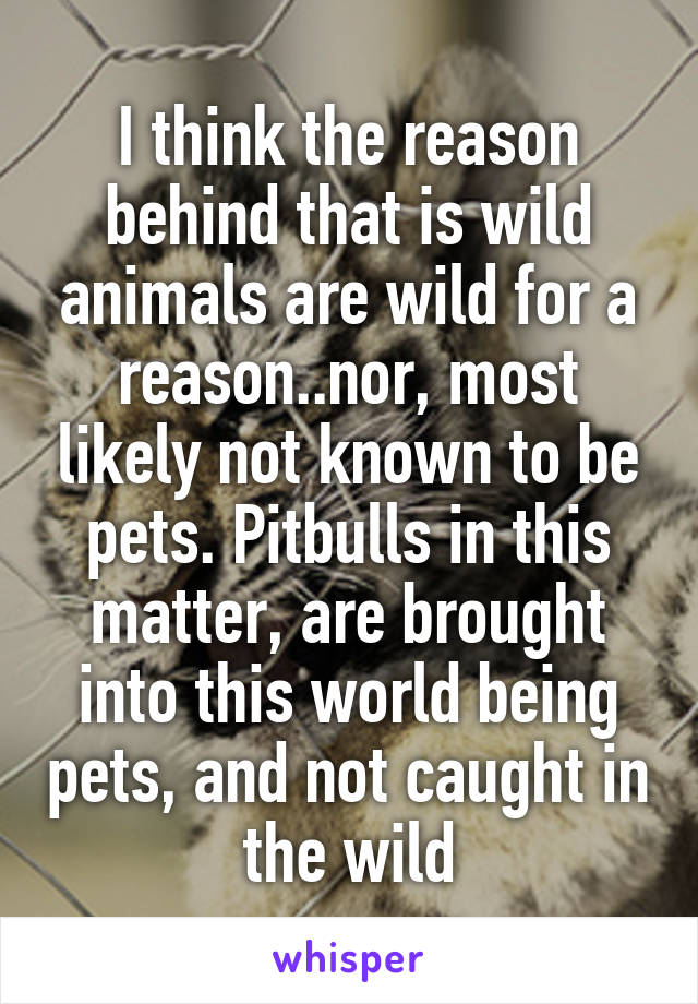 I think the reason behind that is wild animals are wild for a reason..nor, most likely not known to be pets. Pitbulls in this matter, are brought into this world being pets, and not caught in the wild