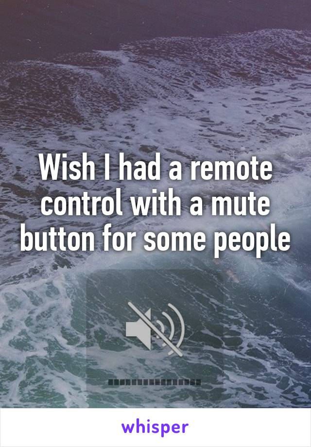 Wish I had a remote control with a mute button for some people