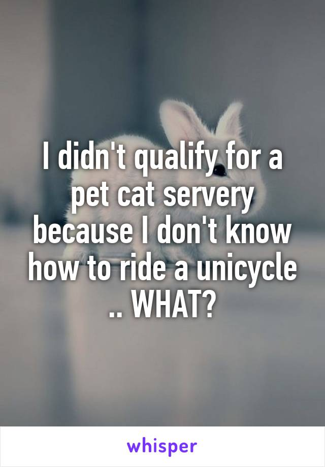 I didn't qualify for a pet cat servery because I don't know how to ride a unicycle .. WHAT?