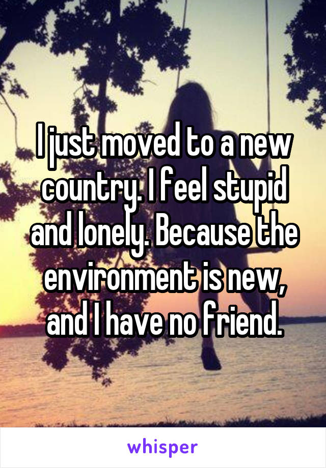 I just moved to a new country. I feel stupid and lonely. Because the environment is new, and I have no friend.