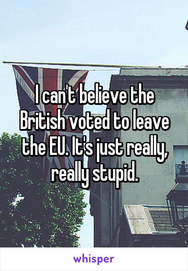 I can't believe the British voted to leave the EU. It's just really, really stupid.
