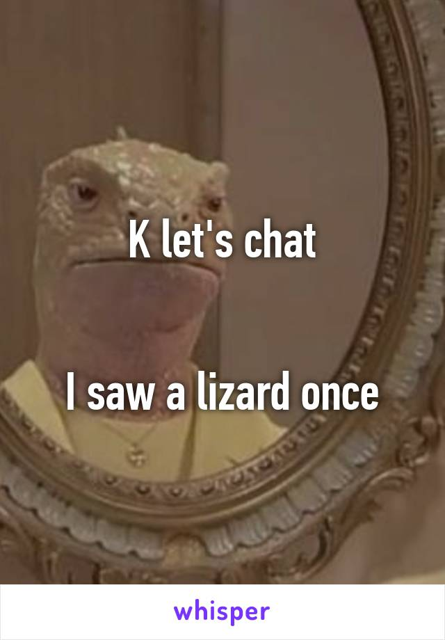 K let's chat   I saw a lizard once