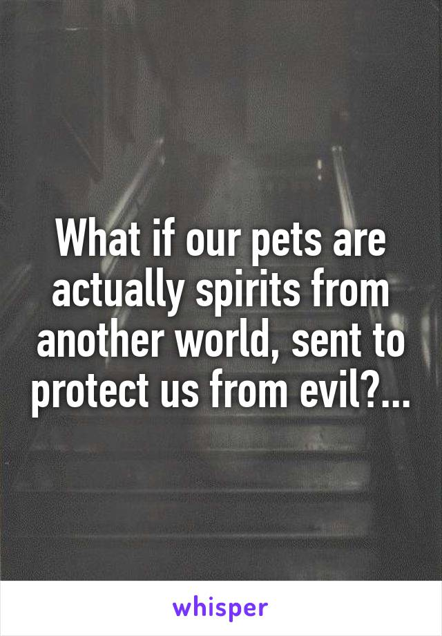 What if our pets are actually spirits from another world, sent to protect us from evil?...
