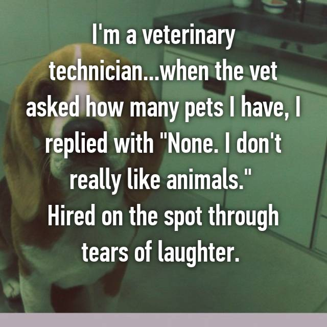 "I'm a veterinary technician...when the vet asked how many pets I have, I replied with ""None. I don't really like animals.""  Hired on the spot through tears of laughter.  👌🏻"