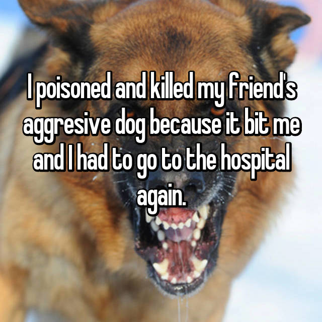 I poisoned and killed my friend's aggresive dog because it bit me and I had to go to the hospital again.
