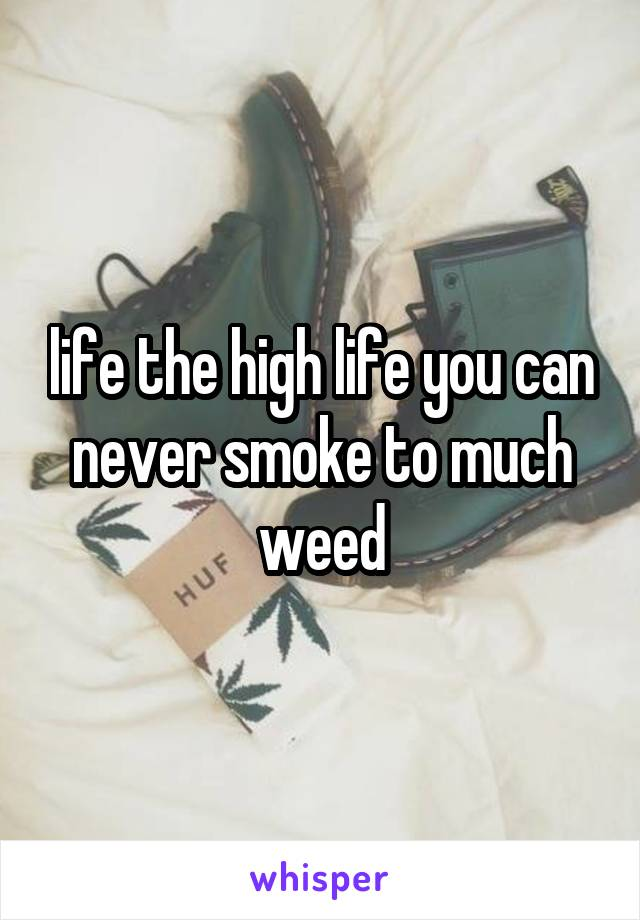 life the high life you can never smoke to much weed