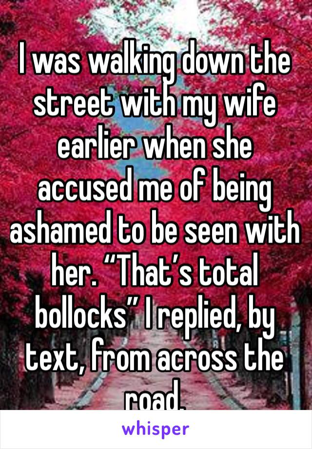 "I was walking down the street with my wife earlier when she accused me of being ashamed to be seen with her. ""That's total bollocks"" I replied, by text, from across the road."