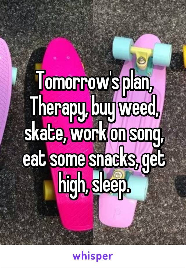 Tomorrow's plan, Therapy, buy weed, skate, work on song, eat some snacks, get high, sleep.