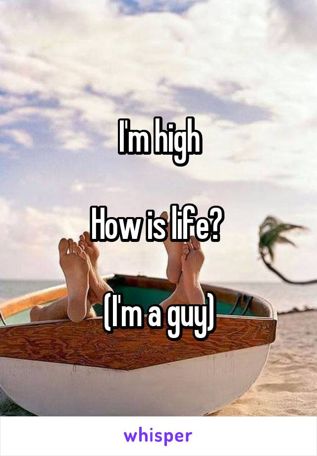 I'm high  How is life?   (I'm a guy)