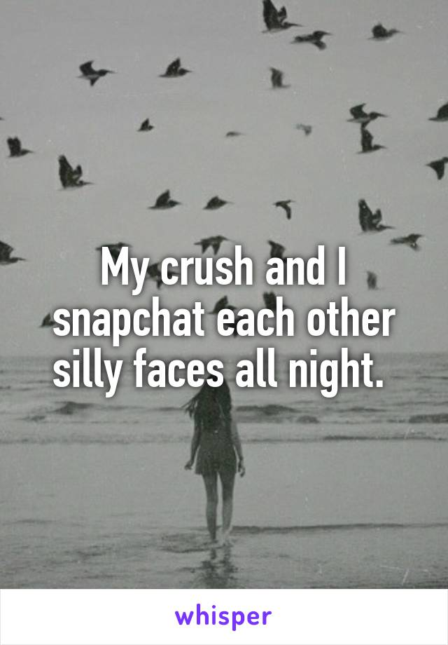 My crush and I snapchat each other silly faces all night.