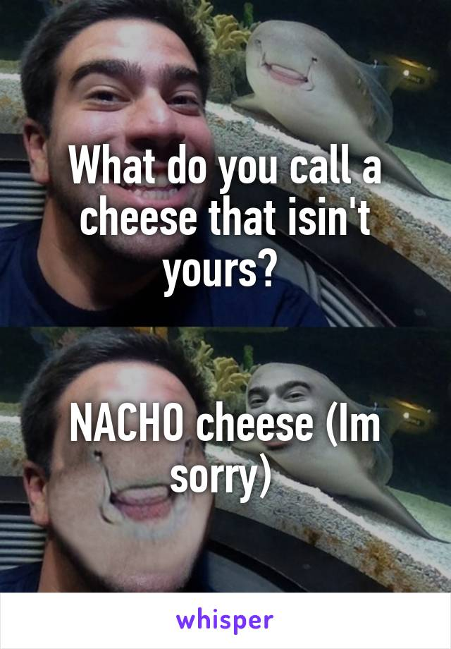 What do you call a cheese that isin't yours?    NACHO cheese (Im sorry)